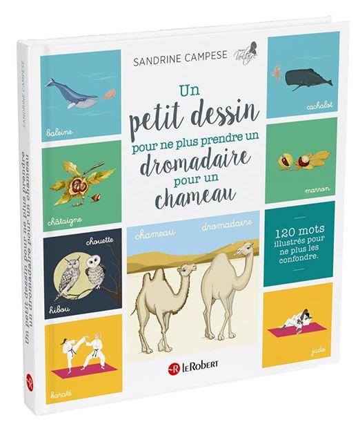 dromadaire-chameau